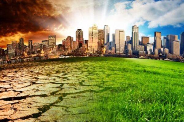 Devenir une ville résiliente en temps de COVID-19